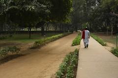 Lodhi Garden walk