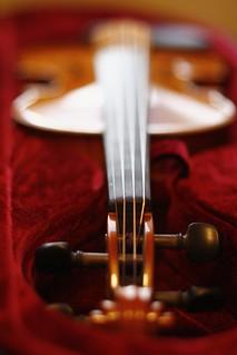 violin-case