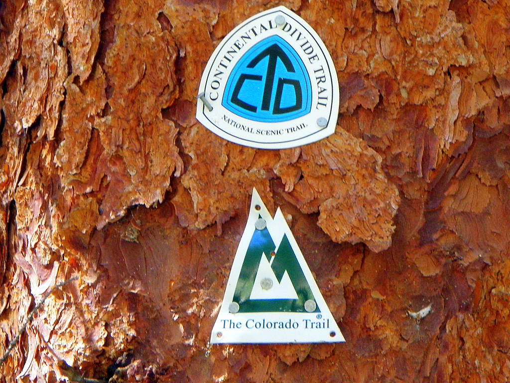 Heading up the Colorado Trail/Continental Divide Trail.