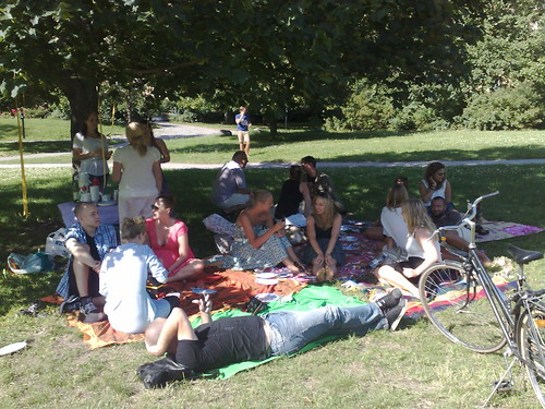 Picnic crowd