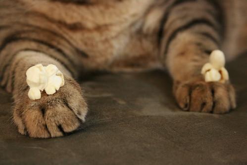 Popcorn toes