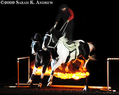 Tommie Turvey, Joker & Ace leap over fire during Theatre Equus in Harrisburg, PA