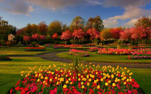 Spring Colours - Victoria Park Glasgow by euan_pics