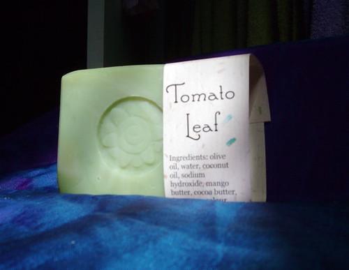 tomatoleaf