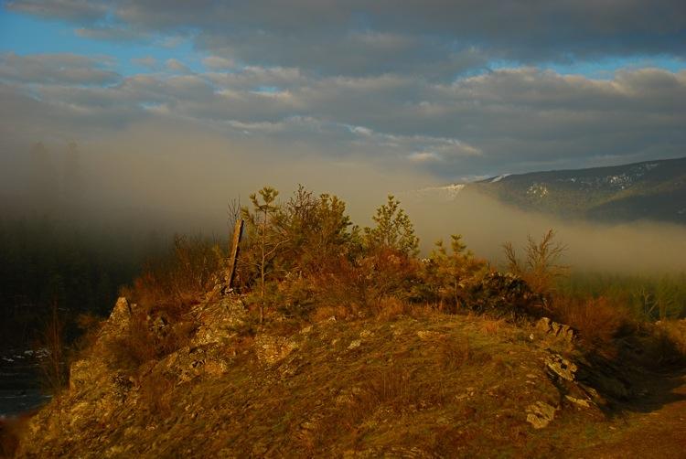 On the edge of the fog