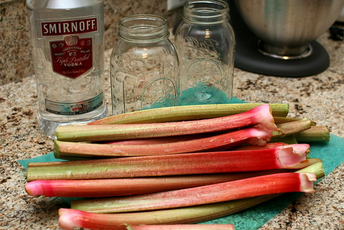 Making Rhubarb Cordial