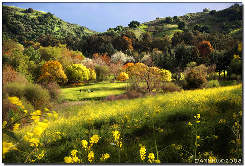 Fall in Spring by danno26.2