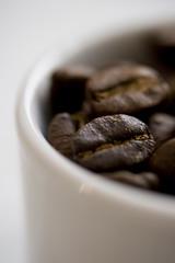 Coffee of the month - Kenya Kiriga Estate
