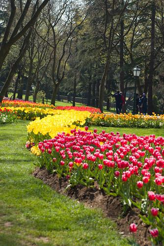 Istanbul Tulip Festival, İstanbul, Pentax K10d