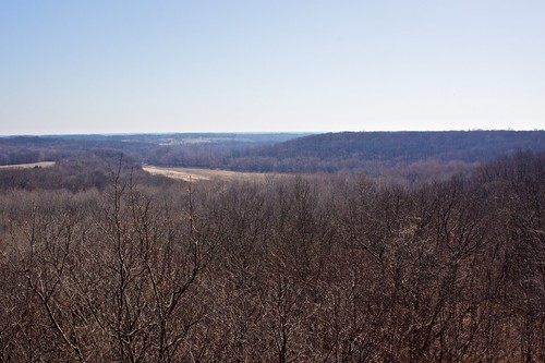 View from Forest Glen observation tower
