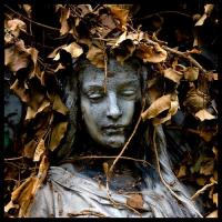 40 Hauntingly Beautiful Photographs Taken In Graveyards
