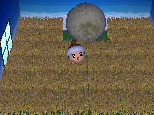 Its my favorirte room in all of Plaahaus!  And I sent them this moon!  lol