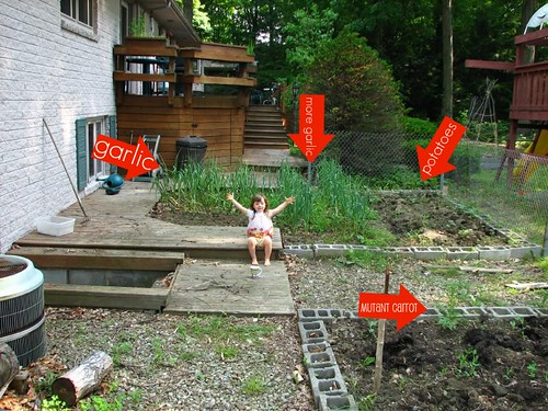 How Big Is Your Garden?