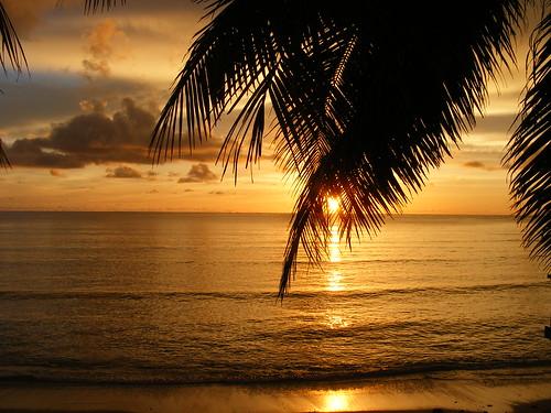 Yellow sunset 3