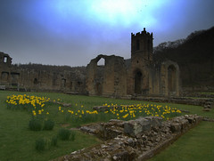 Mount Grace Priory ,Osmotherly