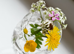 Wildflowers in a glass