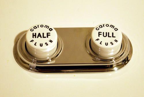 Dual flush toilet buttons