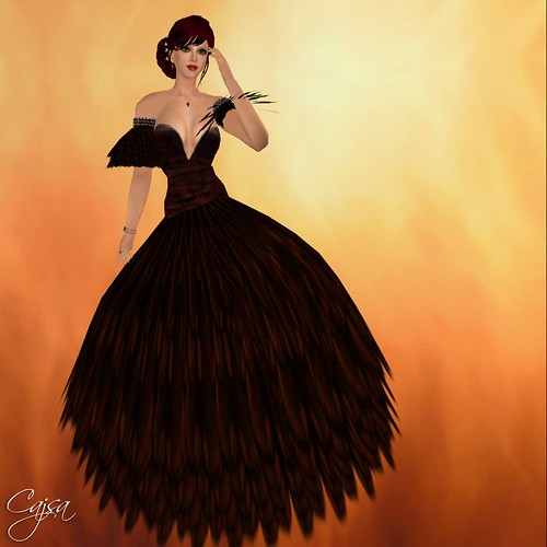This is the Black Swan dress Callie designed for another example of fashion