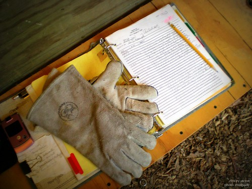 My rehab accountrements: leather falconer gloves, rehab notebook, trusty pencil.