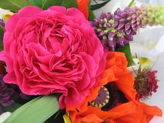 Farmers Market Flowers by choconancy