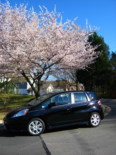 My new car and cherry blossoms