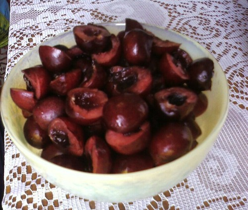 Life is but a bowl of cherries!