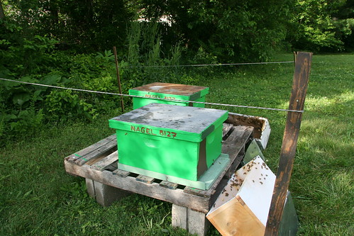 bee work done, hives ready