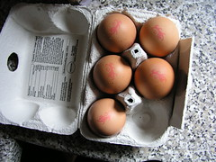 British organic, free-range eggs stamped with a lion