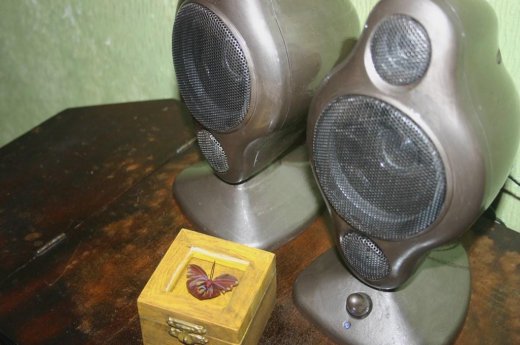 Old world speakers?