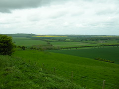 View towards Barbury Hill