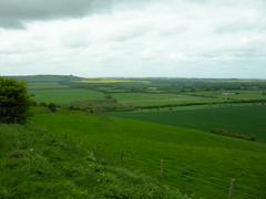 View towards Barbury Hill