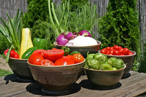 Veggies for Gazpacho and Panzanella!