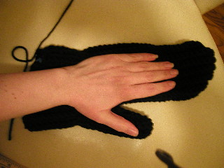 The mammoth mitten, compared to the hand for which it was intended