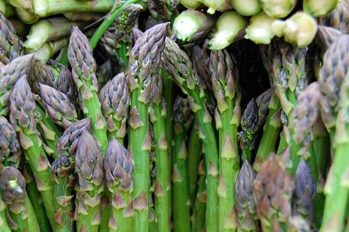 Bountiful Asparagus
