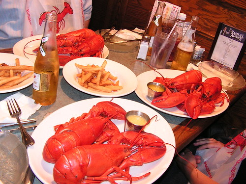 This is what 6 lobsters look like