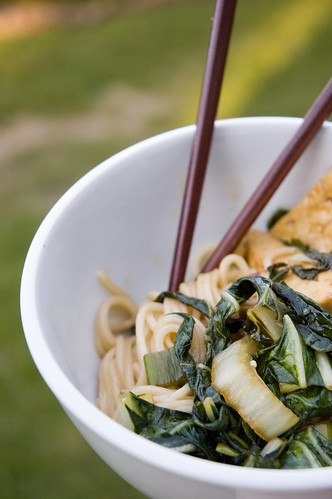 04.06.2009: noodles with bok choy and tofu (by bookgrl)