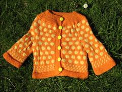 Cardigan_2009_03_02_OrangeYellow_Olivia
