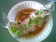 Steamed ikan semah 1