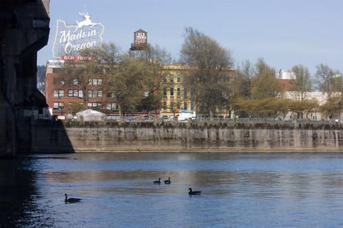 Au bord de la Willamette river, Portland, OR
