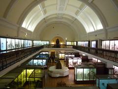 Horniman Museum (3)