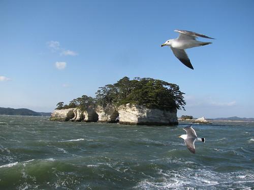 Isoletta nella baia di Matsushima, e Gabbiano