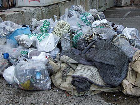 漂着ゴミを清掃!~PCゴミ