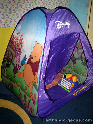 Pooh Tent and Alphabet Log
