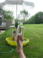 Splashed Foot
