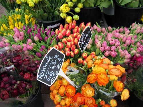 Flowers for sale in Avignon.