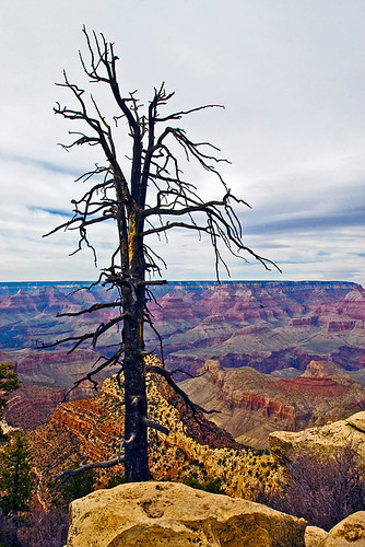 This was certainly taken at Grandview Point.