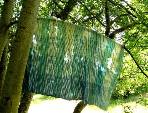 tree makes a nice drying rack, too