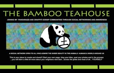 THE BAMBOO TEAHOUSE..PANDARAZZI SOCIAL NETWORK