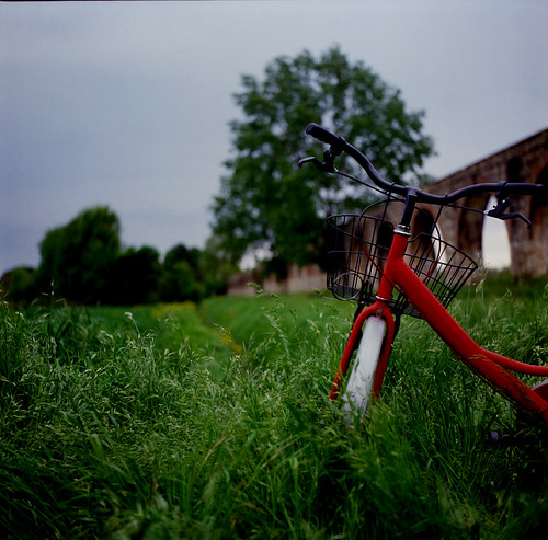 red bike on green grass with gray sky