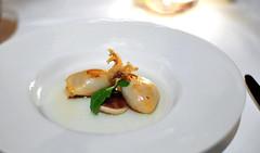 3rd Course: Calamari (Chef's Tasting)